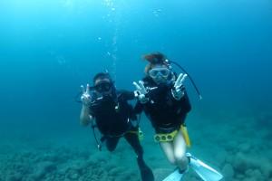 伊豆海洋公園でのダイビングスクール