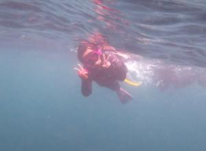 伊豆海洋公園でのスキンダイビングスクール