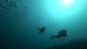 20200712伊豆海洋公園6