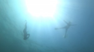 20200816伊豆海洋公園スキン15